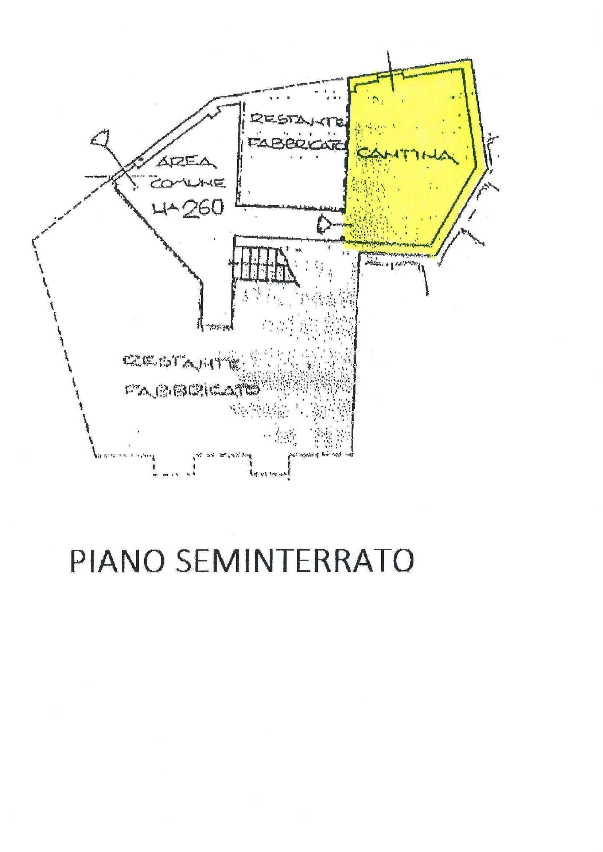 Bilocale a piano terra ristrutturato, Cavandone