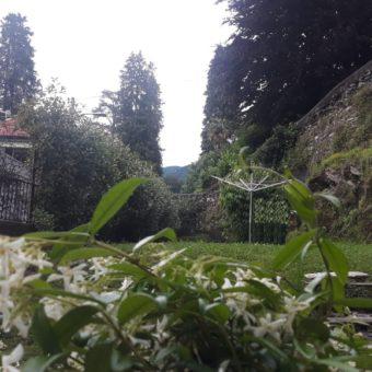 Bilocale con giardino, Intra