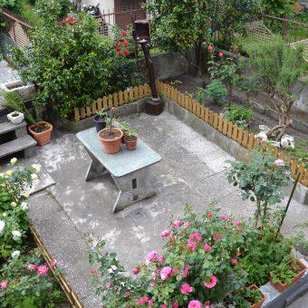 Casa semi indipendente con giardino e terrazzo, Ornavasso